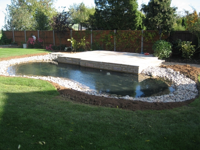 Ponds andres garcia garden landscaping and garden design milton newpond workwithnaturefo